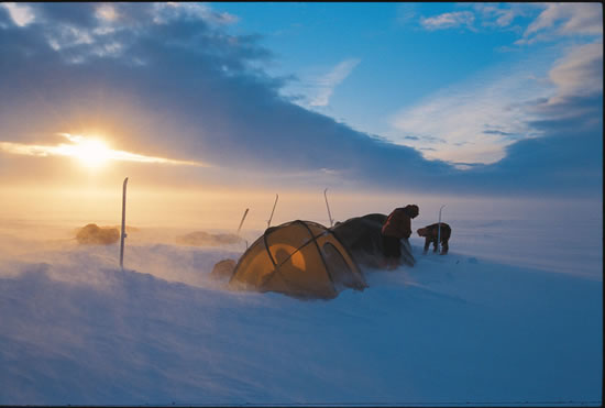 They've done it! Young explorers complete epic crossing of Greenland ice cap