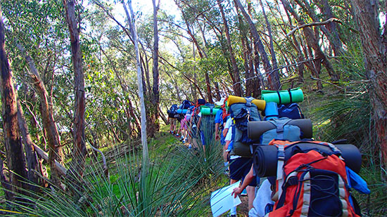 Bushwalking. Copyright Wilderness Escape 2019. All rights reserved.