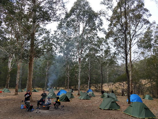 Campsite. Copyright Barker College 2020. All rights reserved.