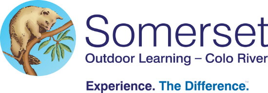 Somerset Outdoor Learning. Copyright Somerset 2020. All rights reserved.
