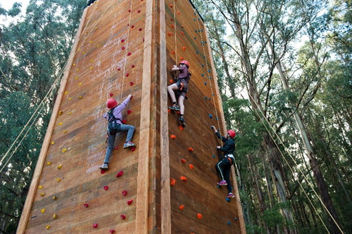 Climbing Tower. Copyright Binadree 2021. All rights reserved.
