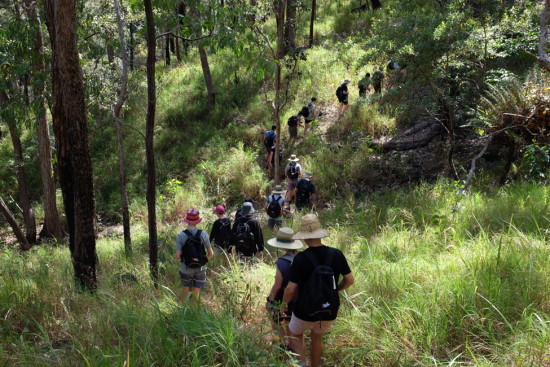 Bushwalk. Copyright Red Earth 2021. All rights reserved.