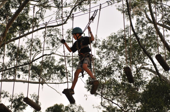 High Ropes. Copyright Scouts NSW 2021. All rights reserved.