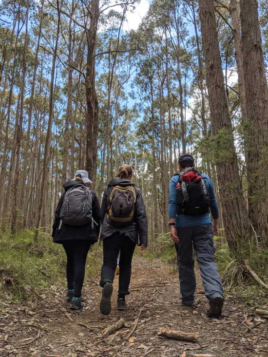 Bushwalking. Copyright UC Camping 2021. All rights reserved.